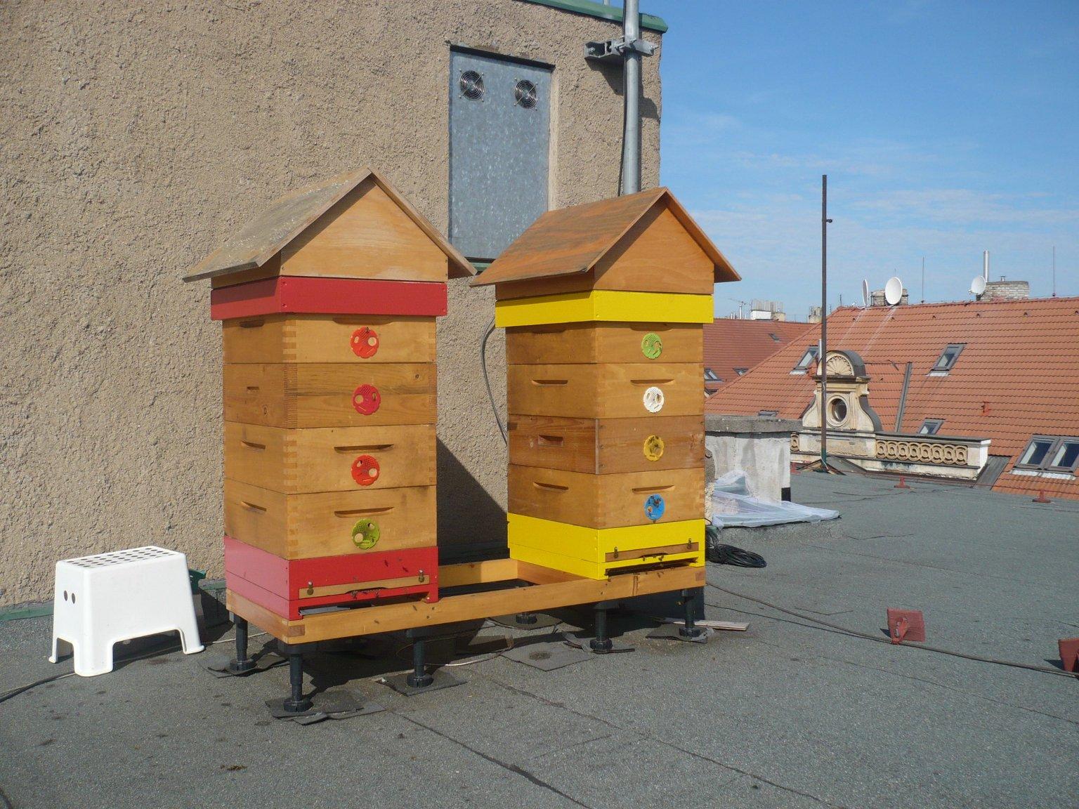 Pražské střechy hostí včely - činžovní dům Holešovice