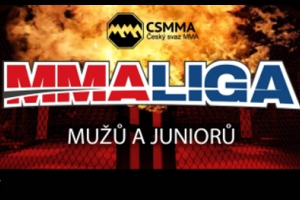 WORLD MMA CUP 2016